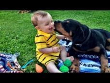 Nette Babys spielen mit Rottweiler Hunde Video Compilation 2014